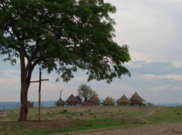 Zimbabwe 2007
